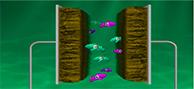Doper des nanofeuillets de graphène pour des supercondensateurs sur puce