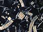 Stockage de carbone dans l'Océan : diatomées sous surveillance