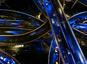 Actine et microtubules : régulations croisées