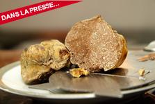 Le génome des truffes révèle le secret de la fabrication de leurs parfums