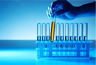 Carcinome rénal à cellules claires : vers une médecine personnalisée