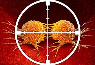 Cancer: des vecteurs thérapeutiques à la loupe