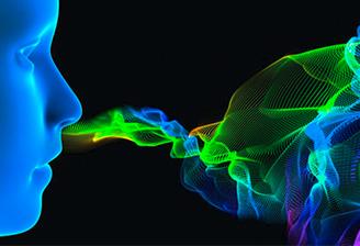 Une réponse olfactive imagée à plusieurs échelles