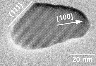 Un peptide accro à la magnétite