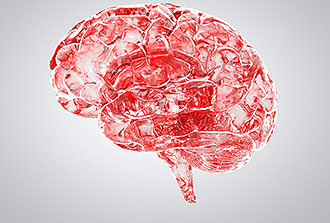 Barrière sang-cerveau : première validation clinique d'un modèle in vitro