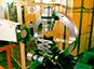 Premières expériences réussies avec Iphi-Neutrons