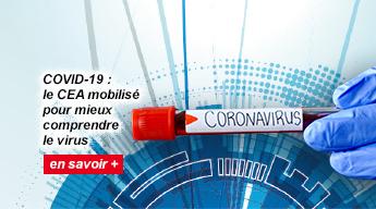 COVID-19 : le CEA mobilisé pour mieux comprendre le virus