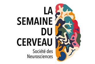 Revivez la semaine du cerveau 2021 à NeuroSpin