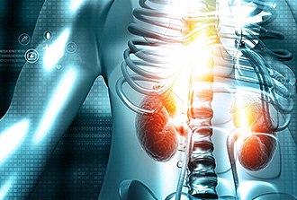 Cancer du rein : deux cibles pour une thérapie