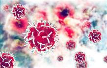 cancer-rouge-MH-Nizamudeen.jpg?RenditionID=5