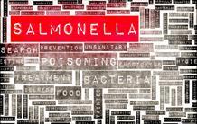 Salmonelloses et shigelloses : 1ère démonstration d'une protection croisée