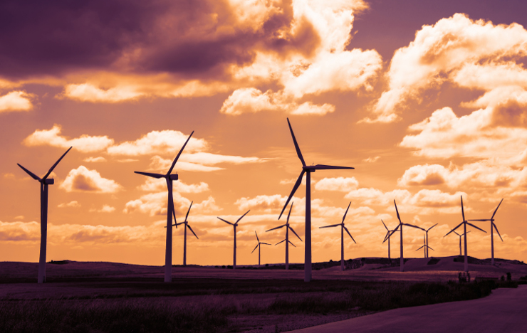 What will the wind do in the coming decades?