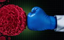 Immune checkpoints : new targets in kidney cancer