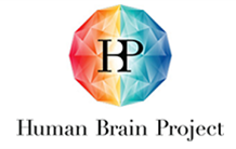 BRICON, a project of the Human Brain Project for NeuroSpin