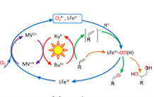 A clean and efficient photocatalysis for the production of compounds of interest