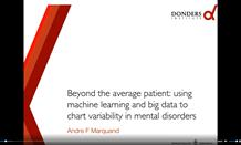 Beyond the average patient: using machine learning and big data to chart variability in mental disorders