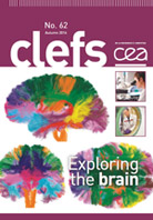 Clefs CEA n°62 - Exploring the brain