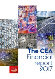 The CEA financial report 2017