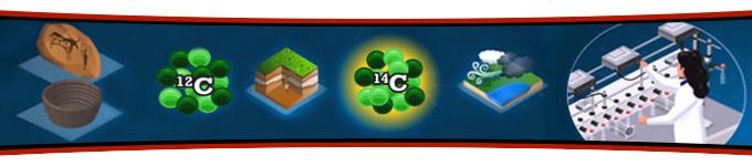Animation Datation Carbone 14