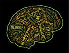 Semaine du cerveau à Saclay