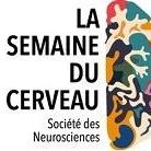 Semaine du cerveau - NeuroSpin CEA Saclay